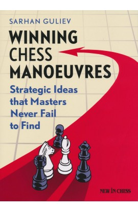 Winning Chess Manouevres