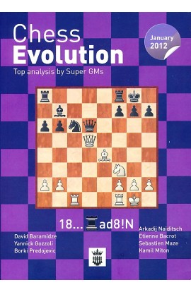 Chess Evolution - JANUARY 2012