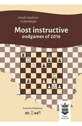 Most Instructive Endgames of 2016