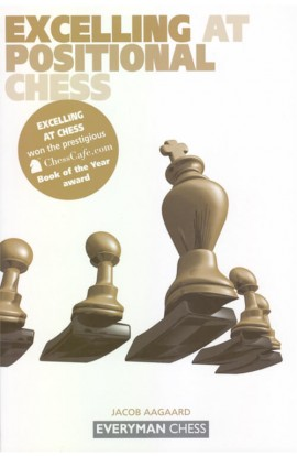 EBOOK - Excelling at Positional Chess