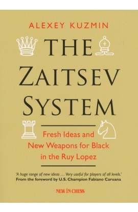 CLEARANCE - The Zaitsev System