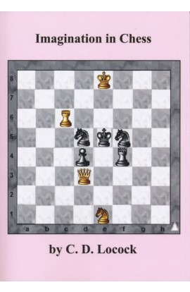 Imagination in Chess