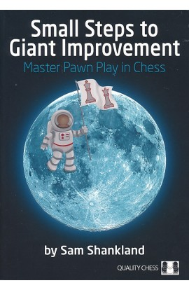 PAPERBACK - Small Steps to Giant Improvement